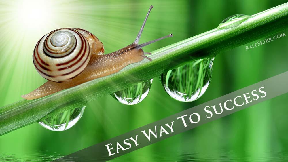 Snail moving upwards.